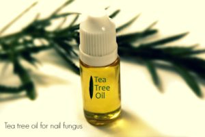 tea-tree-oil1